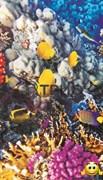 """Инфракрасный обогреватель с изображением на стену """"Коралловый риф (рыбки)"""""""