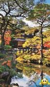 Обогреватель пленочный на стену «Японский сад (сад Киото)»